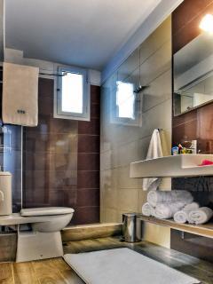 Bathroom - Basement