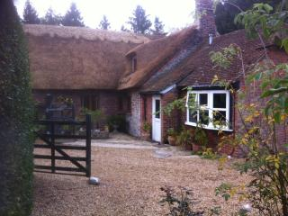 Annex attached to Thatched Cottage