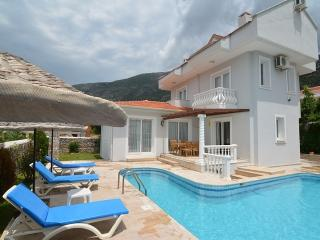 GLV301 3 Bed. Villa for rent in Ovacik Fethiye, Ölüdeniz