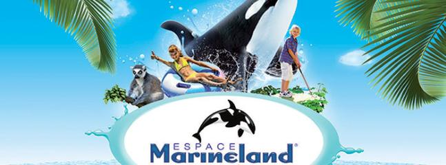 Marineland offers a wide range of activities where you can enjoy yourself