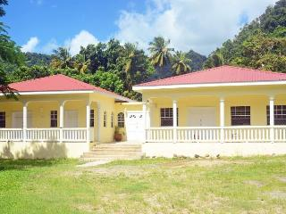 The yellow Palm, Soufriere