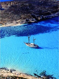 We organise daily boat trips to the beautiful Blue Lagoon in Comino!