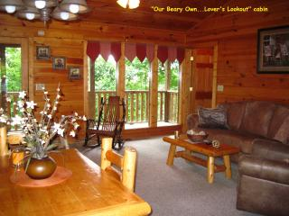 """Lover's Lookout"" Honeymoon, Luxury/ Budget Very Private Cabin & Sm Family Too, Gatlinburg"
