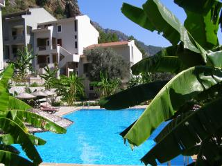 Olive Grove Garden Apartment, Turunc