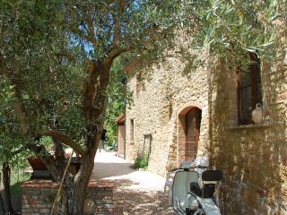 Il Fonte, San Dalmazio