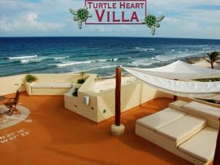 Turtle Heart Villa, A caribbean beachfront villa and marine turtle conservancy