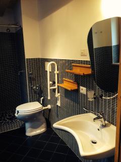 Camera Verde con bagno privato attrezzato per disabili (bathroom equiped for disables) TV e internet