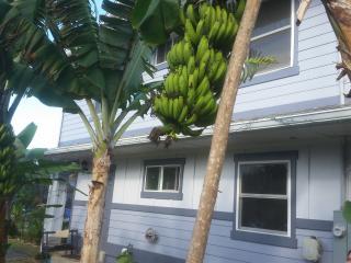 Banana Bungalow 2 Bed Apt/ Sleeps 6 /Laie Hawaii