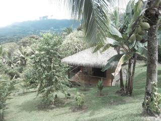 CHALET IN A TROPICAL GARDEN, Ojochal