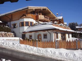 FeWo Apartment Weinberg Kirchberg in Tirol
