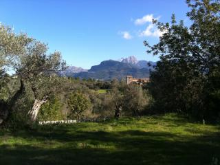 Soller Soap Factory - Mountain View