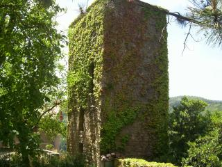 Unique holiday cottage in Tuscany, the Watch Tower, Stia