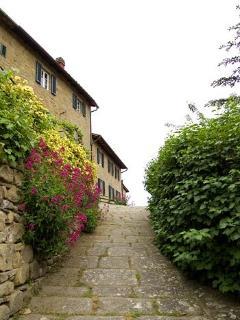 Stone paved walkways