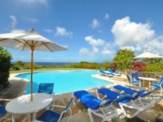 5Bed+Pool+Tennis.Butler+Cook+Sea View.10%OFF+CAR!, Holetown