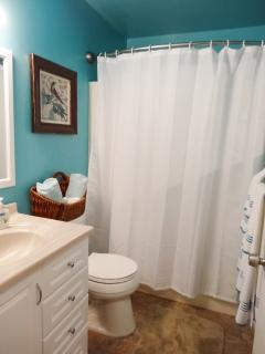 Shower and tub in master bath.