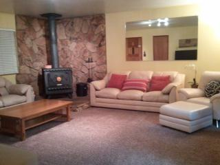 Spacious Living  Room, 42 inch flat screen, Cable,DVD movie library, WiFi & wood burning stove