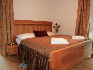 Ground floor, marvelous views , comfomfort, Bohinjsko Jezero