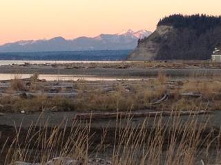 View of the Olympic mountains from the front yard at twilight.