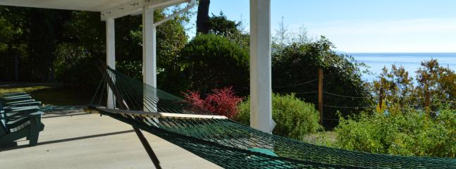 Lower patio with hammock