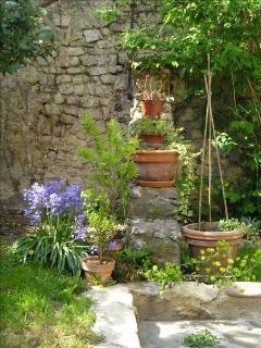 En avril et mai : La terrasse fleurie de jacinthes