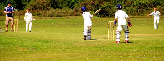 Village Cricket at Hyde