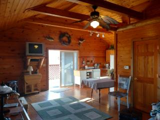 Retreat Cabin for all season stay or for any event, Bethany