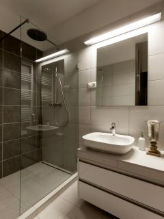 Luxury walk-in shower room