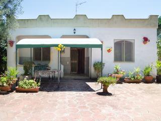 BO008 Villa Donata con giardino, Punta Prosciutto