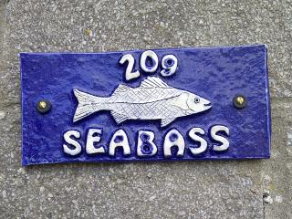 Seabass 209 Trewent Park, Pembrokeshire, Wales, Freshwater East