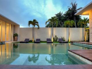 Villa Umah Putih Canggu 2 BDR private pool