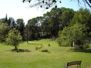 Le jardin avec une balançoire et une maison en bois pour les petits