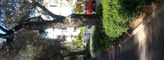 Ben-Gurion Avenue just around the corner