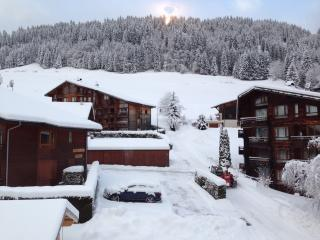 Morzine new 2 bed apartment ski in/ski out