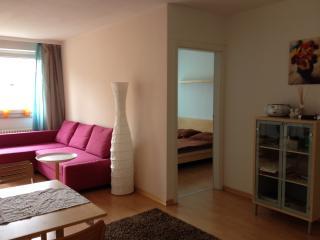 Salzburg City Apartment