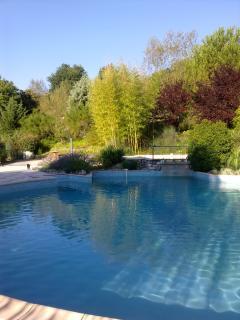 Swimming pool LESPINET