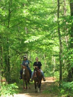 Hiking and horseback trails on the ranch