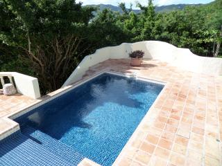 Luxury 3 Bedroom Vacation Villa on Tortola BVI!, Road Town