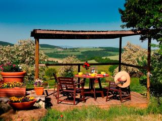 A view to the Val d'Orcia...