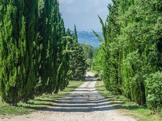 Domaine de Pijaubert, Montauroux