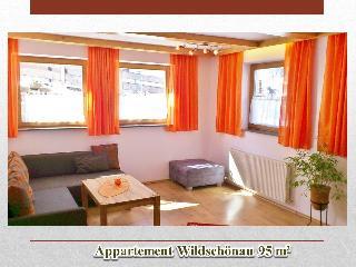 Apartment Wildschoenau Tyrol Austrian Alps 102, Oberau