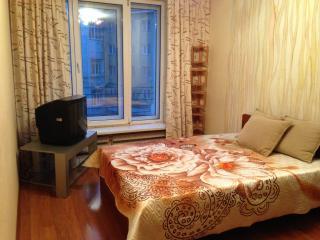 Квартира в центре города, Nizhny Novgorod