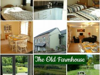 Old Farmhouse, Higher Longford, Tavistock