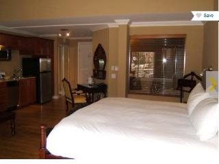 BEAUTIFUL SUITE IN ST-SAUVEUR