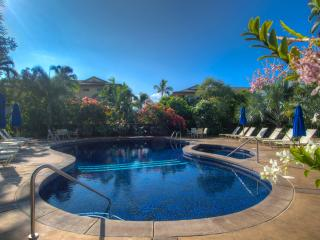 Waikomo Stream Villas 223