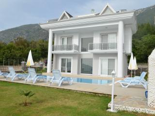 Four bedroom villa for rent in Ovacik View villa