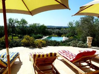 LS1-174 ESPANTO, wonderful rental in Alpilles area