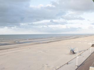 schopenhauer-at-the-beach