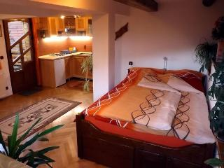 Studio-Apartment Zollo II, 2-3 sleeps (Casa Vale, Sibiu, Transylvania, Romania)