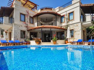 Spacious designer Villa, quiet location, Breathtaking Sea Views, sleeps 12
