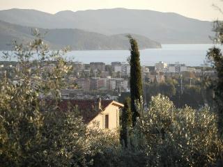 Villa Palmira, Follonica